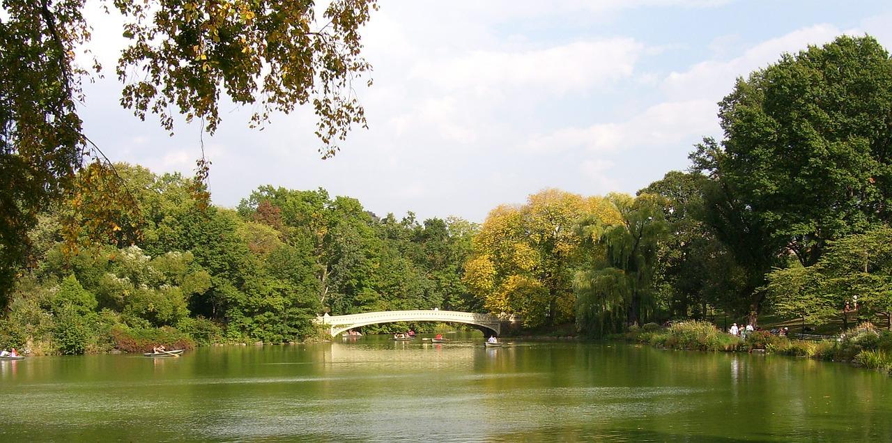 The lake and a samlla bridge in Central Park.